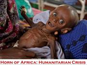 Horn of Africa - Humanitarian crisis