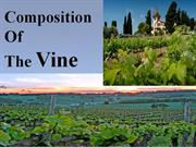 Composition of the Vine