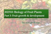 Biology of Fruit: Growth&Development