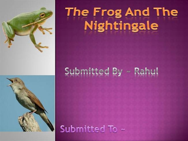 The frog and the nightingale drawings