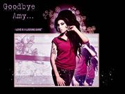 Goodbye Amy Winehouse