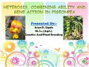 heterosis, combining ability and  gene action in pigeonpea