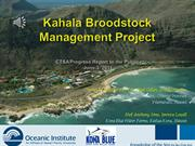 Kahala Broodstock Management: Final Report