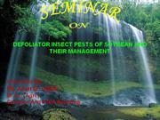 defoliator insect pests of soybean and their management