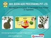 Dehydrated Flakes And Powders By M. R. Scion Agri Processors Private