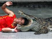 Amusing pictures from around the world