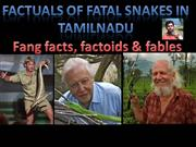 Factuals of Fatal snakes in TN - N.Balaji (M.Sc. Forestry)