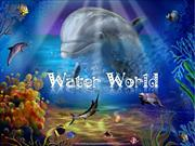 Water World (2)