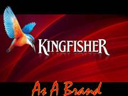 final Kingfisher ppt