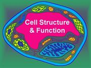 Cell_structure_function