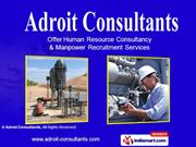 Consultancy Services By Adroit Consultants Mumbai