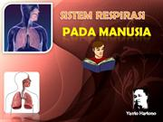 SISTEM RESPIRASI PADA MANUSIA