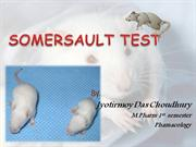 SOMERSAULT TEST