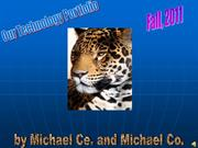 Michael Ce. and Michael Co. Powerpoint