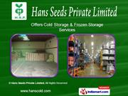 Warehousing Services. By Hans Seeds Private Limited Ghaziabad