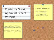 Appraisal Expert Witness