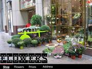 AP (Flowers Shop)