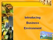 Business Environment - Introduction
