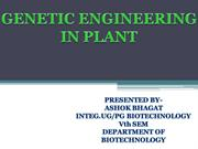 genetic engineering in plants-seminar