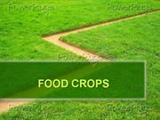 FOOD CROPS