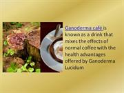 Ganoderma Cafe is Ganoderma   Lucidum and Coffee