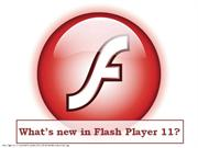 Whats new in Flash Player 11?