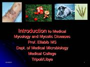 introduction to medical mycology and associated diseases