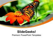 BACKGROUND WITH FLOWER AND BUTTERFLY HAPPINESS PPT TEMPLATE