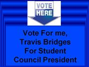 Travis Bridges