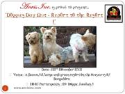 Anvis Event_Doggies Day Out - Report to the Resort_Participants