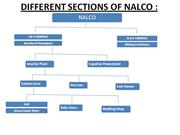 DIFFERENT SECTIONS OF NALCO