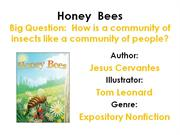 Honey Bees-1
