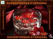 superporous hydrogel