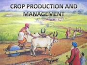 CROP PRODUCTION AND MANAGEMENT CLASS 8