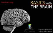 Basics with Radiological anatomy of brain