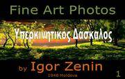 Igor Zanin-Photographer