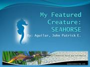My_Feature_Creature