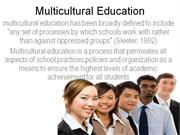 Typology of multIcultural education