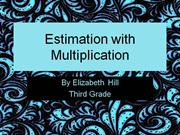 Estimation with Multiplication