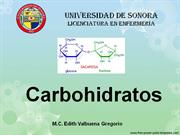 3._Carbohidratos