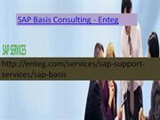 Enteg SAP Basis Consulting