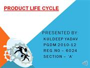 Product Life Cycle by kuldeep yadav