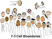 Cell Boundaries-Blackboard