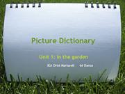 Picture_Dictionary