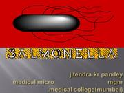salmonella ,ppt by jitendra kr pandey, mgm medical college mumbai,