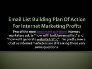 Email List Building Plan Of Action For Internet Marketing Profit