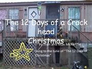 The 12 Days of a CrAcKheAd