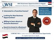 WSI Business Opportunities in Egypt