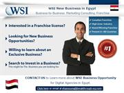 WSI New Business in Egypt