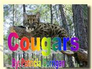 Cougars3